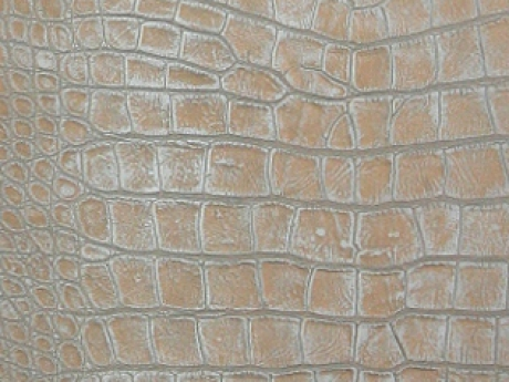 Texture leather 3ds max